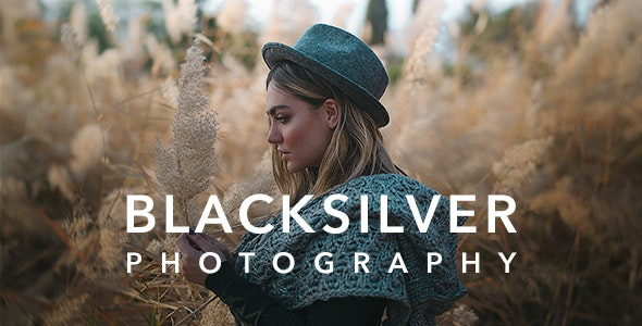 Download Blacksilver v1.8.9 - Photography Theme for WordPress