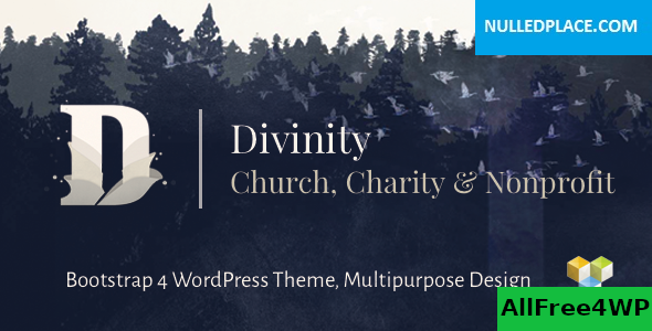 Download Divinity v1.3.4 - Church, Nonprofit, Charity Events Theme